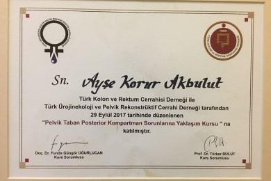 Türk Kolon ve Rektum Cerrahisi Derneği